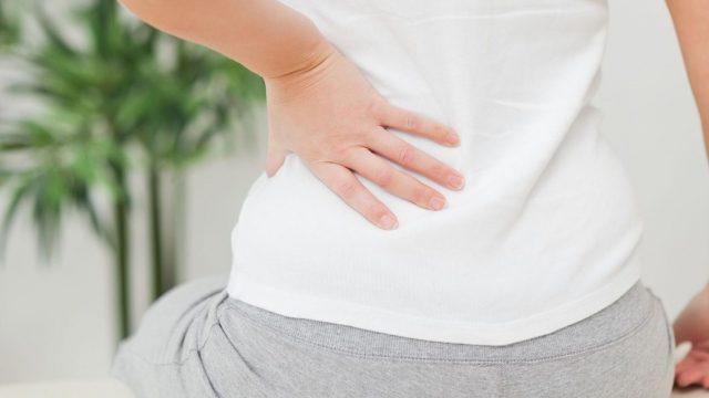 pain in the lower left side of back - edupain